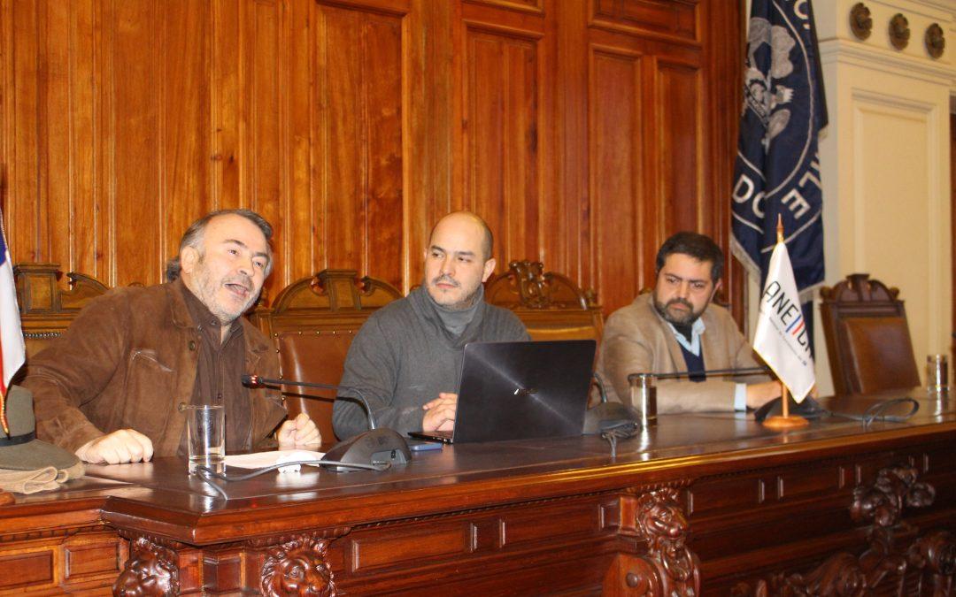 """Panel """"Desafíos Presentes en el Debate Tributario"""" en Seminario ANEIICH"""