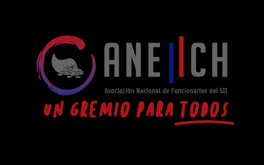 Elecciones de Regional Puerto Montt culminan con altísima participación en inédito proceso mediante votación electrónica