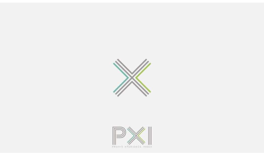 Resultados encuesta Praxis (PXI 2020)