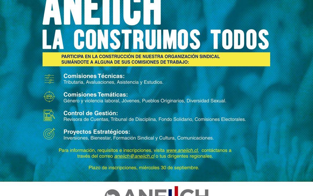 Participación informada y trabajo en conjunto a nivel nacional: ANEIICH presenta su plan de Comisiones de Trabajo