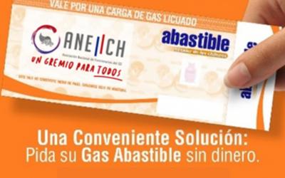 ANEIICH retomó convenio con ABASTIBLE para socias y socios